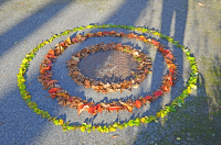 Land art au lycée
